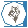 Complex Wolf Partener Logo